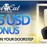 free-spins casino bonus