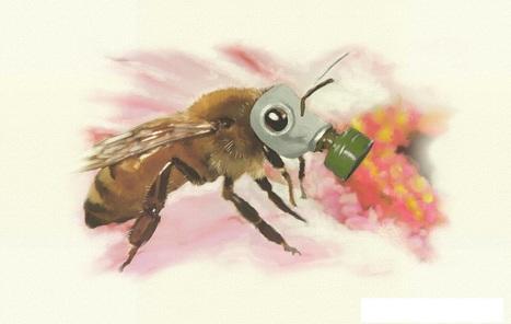 La Commission braque les microscopes sur trois pesticides controversés | Alimentation Générale | AG | Abeilles, intoxications et informations | Scoop.it