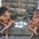 2 funny boy playing in a card | 2 dogs are very happy | Scoop.it