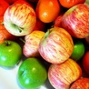 Child Health & Food