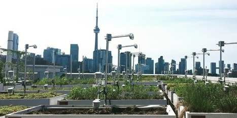 Grey to Green: Quantifying Green Infrastructure Performance - Conference | Farming, Forests, Water, Fishing and Environment | Scoop.it
