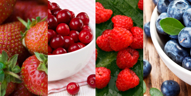 Nicky Park: These fruits are berry good for you - Life & Style - NZ Herald News | Research from the NC Agricultural Research Service | Scoop.it