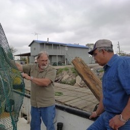 Graham A Great Catch For Shrimp Fishery | TAMUtimes | Sustainability & Us | Scoop.it