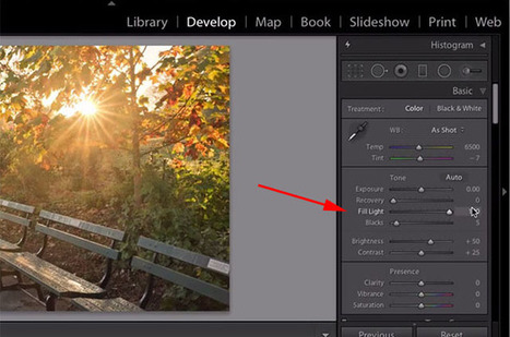Use This Lightroom 'Secret Slider' Trick for Extreme Shadow Recovery | Photography | Scoop.it