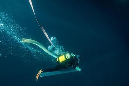 DIAPO. Les archéologues à l'assaut des trésors marins à Saint-Tropez | Bibliothèque des sciences de l'Antiquité | Scoop.it