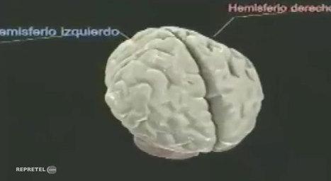 Cada 4 segundos se diagnostica en el mundo un nuevo caso de Alzheimer | Alzheimer, para no olvidar | Scoop.it