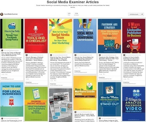 Pinterest Tactics: How to Grow Your Pinterest Following and Your Traffic : Social Media Examiner   Pinterest for Business   Scoop.it