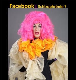 3ème histoire #ET8 : la schizofrénie Facebook | Web 2.0 et société | Scoop.it