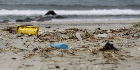 This Is How Your Plastic Bag Ends Up In Massive Ocean Garbage Patches [Infographic]   NGSS Resources   Scoop.it