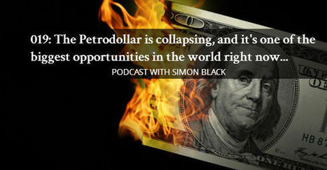 The Petrodollar is collapsing, and it's one of the biggest opportunities in the world right now... | An Expat Freelance Writer's Thoughts | Scoop.it