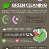 House Cleaning Facts   A Clean, Green Home   Scoop.it