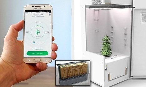 Startup reveals the 'Keurig for cannabis' that grows plants for you | Soup for thought | Scoop.it