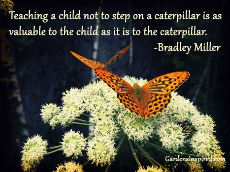 A Bradley Miller Quote | The Muse | Scoop.it