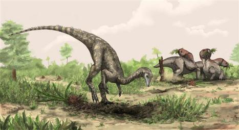 NewsDaily: Earliest known dinosaur discovered | this curious life | Scoop.it