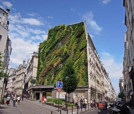 Les plus BEAUX murs végétaux de la capitale | URBANmedias | Scoop.it