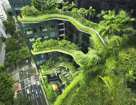 "Interview with WOHA: ""The ONLY Way to Preserve Nature is to Integrate it into Our Built Environment"" 