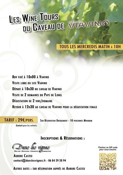 Les Wine Tours du caveau Viavino | Tourisme du vin | Scoop.it