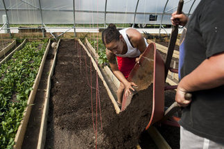 Urban agriculture: Flint River Farm documentary premieres online | Vertical Farm - Food Factory | Scoop.it