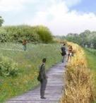 Liaisons douces - La Tegeval prend racine - Environnement Magazine | Agriculture urbaine, architecture et urbanisme durable | Scoop.it