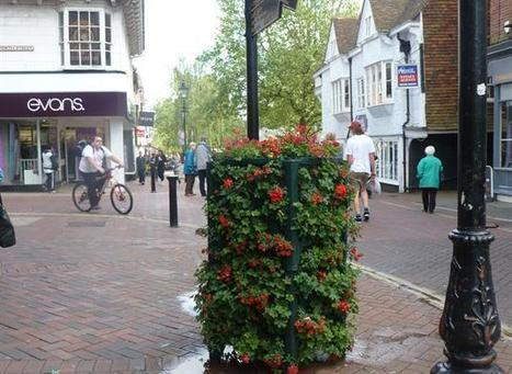 Double the number of floral features brought in to areas like Ashford high ... - Kent Online | Ashford | Scoop.it