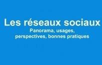 Les réseaux sociaux en 2013 : panorama, usages, perspectives (Slideshare) | Communication - Marketing - Web | Scoop.it