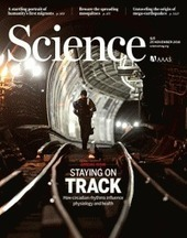 Modified bacterial enzyme taught to make bonds that evolution avoids - bringing silicon to life! | Mineralogy, Geochemistry, Mineral Surfaces & Nanogeoscience | Scoop.it