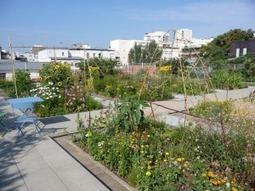 Participez au concours « Jardiner autrement » et dites « non » aux ... | jardins et développement durable | Scoop.it