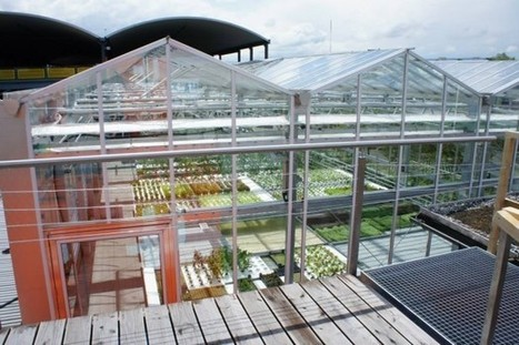 One Aquaponic Rooftop Farm to Go Please | Agriculture urbaine, architecture et urbanisme durable | Scoop.it