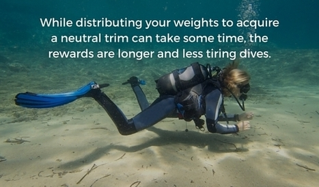 Here is How You Should use Your Weights for Perfect Buoyancy | Bookyourdive | Scoop.it