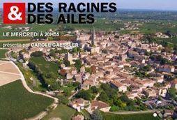 Le petit écran pour le patrimoine girondin - Patrimoine et inventaire d'Aquitaine | Revue de presse Pays Médoc | Scoop.it