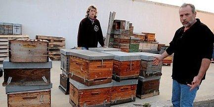 Béziers : quarante ruches volées à un apiculteur - Midi Libre   Abeilles, intoxications et informations   Scoop.it