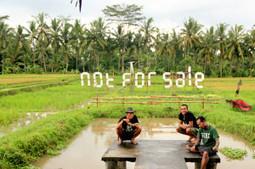 Bali Artists Resist Change - The Jakarta Globe | Scoop Indonesia | Scoop.it