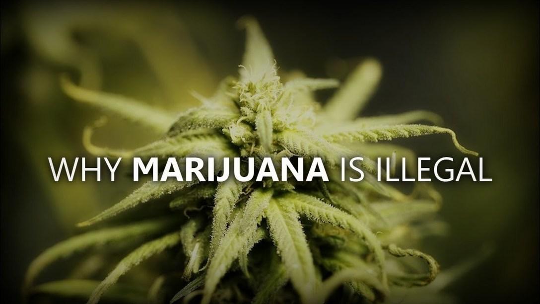 reasons why marijuana should be illegal