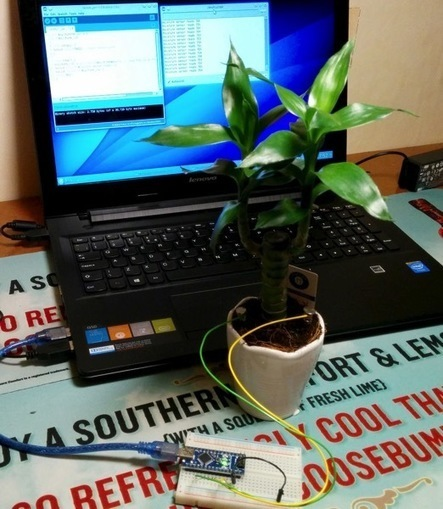 Arduino Powered Moisture Detection #makereducation | Raspberry Pi | Scoop.it