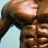 Meal planning for bodybuilding