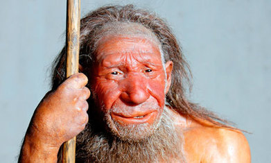 Neanderthals 'unlikely to have interbred with human ancestors' | BIOSCIENCE NEWS | Scoop.it