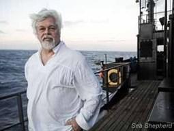 Le Costa Rica monte d'un cran dans son attaque politiquement motivée contre le Capitaine Watson et Sea Shepherd; Interpol a émis une notice 'rouge' - Sea Shepherd FR | Dans mes bulles... | Scoop.it