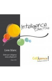 Intelligence collective : Livre blanc - Colligence - Intelligence collective | Art of Hosting | Scoop.it