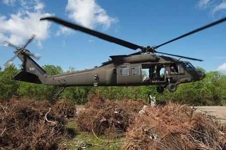 Louisiana National Guard conducts annual Christmas Tree Drop in Bayou Sauvage | Christmas Trees and More | Scoop.it