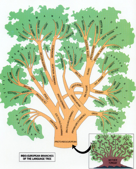 Indo-European language tree   Learning technologies for EFL   Scoop.it