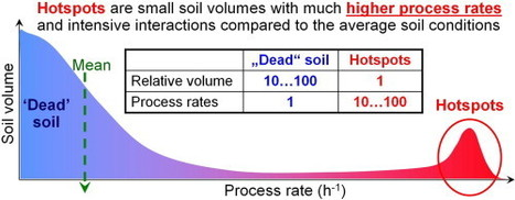 Microbial hotspots and hot moments in soil: Concept & review | Microbes | Scoop.it