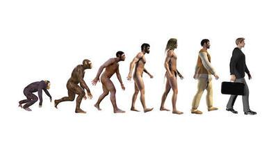 """Mutations du travail post-Covid : """"les chimpanzés ont beaucoup à nous apprendre"""" (Pascal Picq) - Courrier Cadres"""