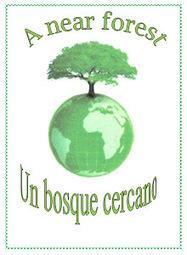 Un Bosque cercano: Plantas tintóreas. Tintes naturales. | Agricultura ecológica y tintes naturales | Scoop.it