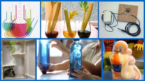 20 Awesome DIY Science Projects to Do With Your Kids | STEM | Scoop.it