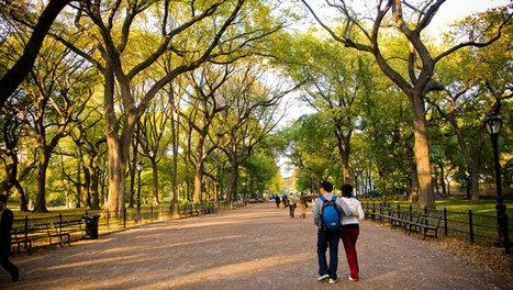 8 astonishing benefits of walking | Public Health | Scoop.it