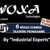 Six Weeks Summer Training in Faridabad