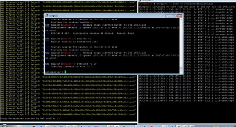Bypassing Anti-viruses with transfer Backdoor Payloads by DNS traffic | d@n3n | Scoop.it