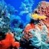 oceanographyfinal