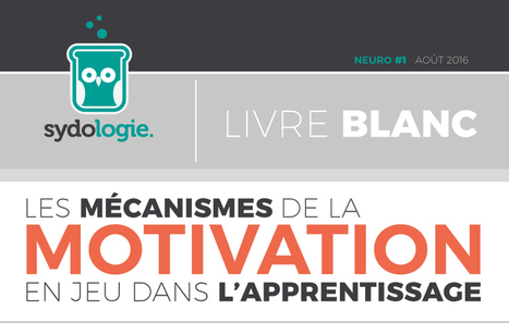 Les mécanismes de la motivation en jeu dans l'apprentissage - Sydologie | psychologie | Scoop.it