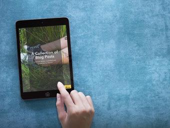 Un nuevo plug-in de WordPress permite convertir un blog en un libro electrónico   Litteris   Scoop.it